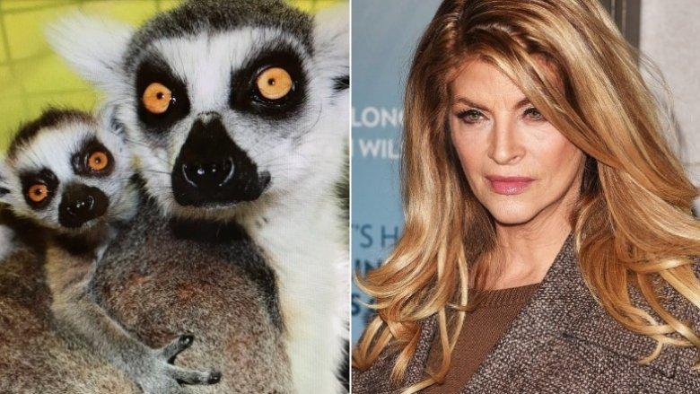 Kirstie Alley Lemurs