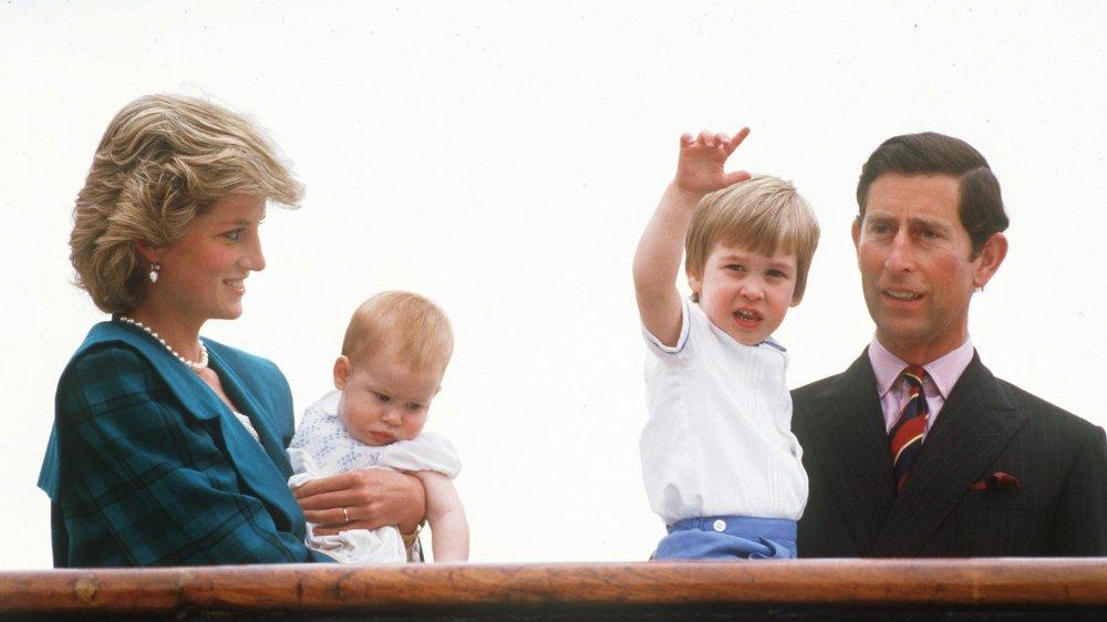 Princesse Diana, Prince Harry, Prince William, Prince Charles
