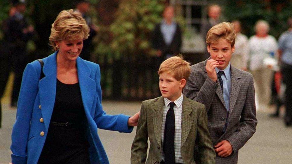 Princesse Diana, Prince Harry, Prince William