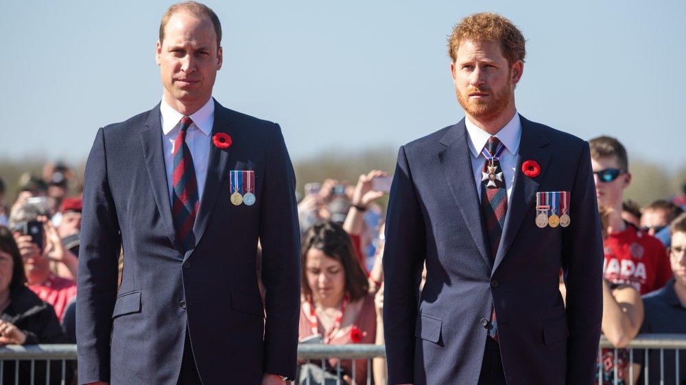 Prince William, Prince Harry debout ensemble