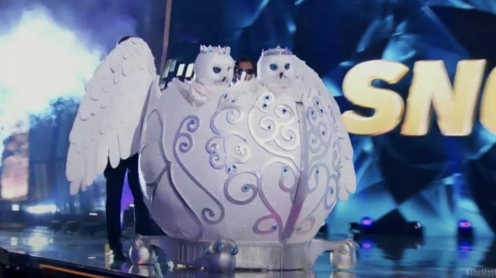 Hiboux de neige sur le chanteur masqué