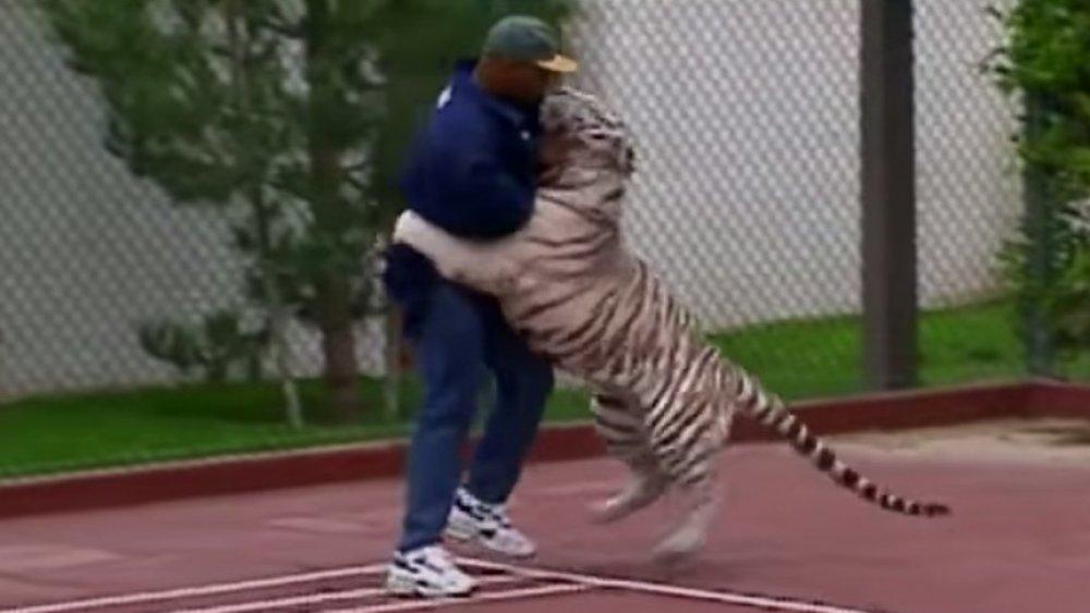 Mike Tyson lutte contre son tigre