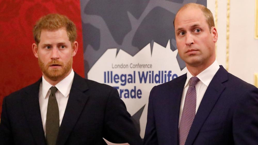 Le prince Harry et le prince William regardant à leur gauche