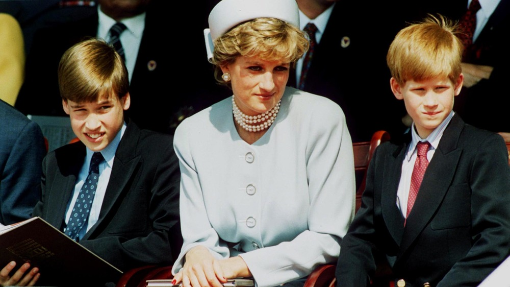 La princesse Diana assise avec Harry et William