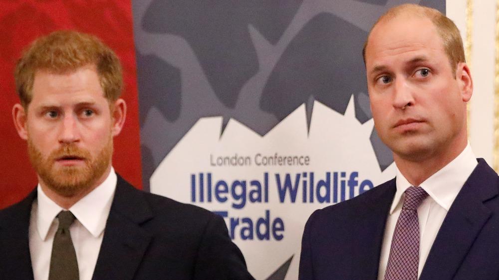 Le prince Harry et le prince William regardant sur le côté