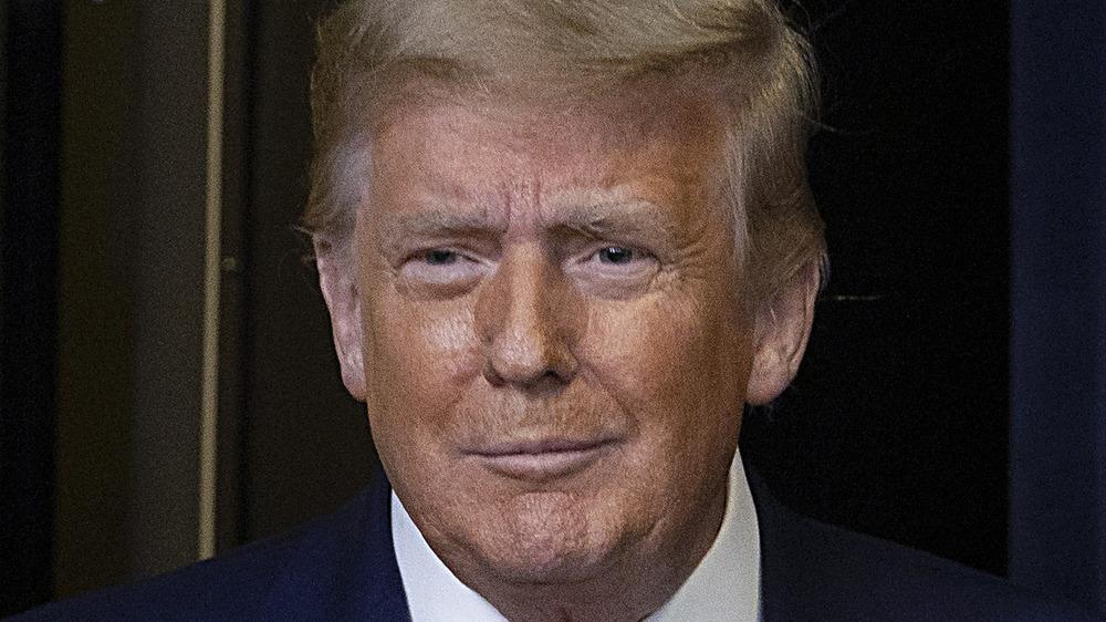 Donald Trump posant