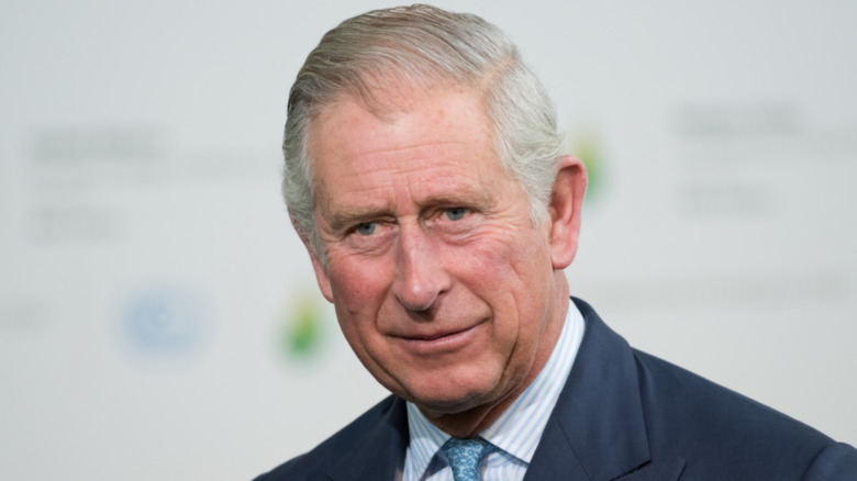 Prince Charles souriant