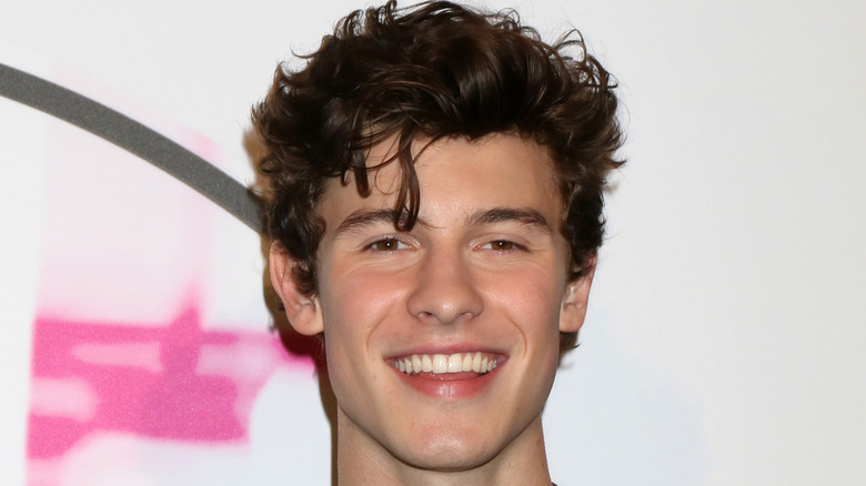 Shawn Mendes souriant